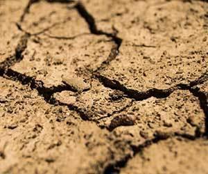 秋冬-肌トラブル-肌荒れ-乾燥-かゆい-悩み-病気-皮脂欠乏性湿疹-画像.jpg