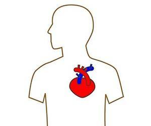 胸の痛み-真ん中-左-右-女性-生理前-更年期-ストレス-原因-チクチク-ズキズキ-病気-心臓画像.jpg