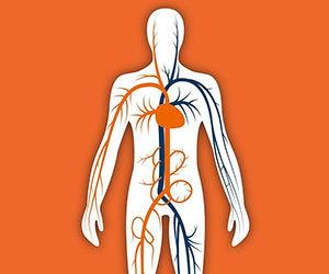 血管年齢-肌年齢-骨年齢-測定-方法-指先-検査-画像1.jpg